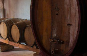 Vini Olivetta