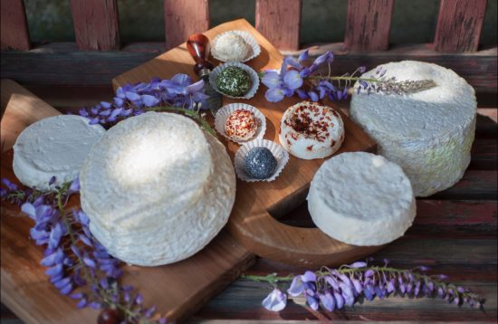 formaggi tenuta del pastur